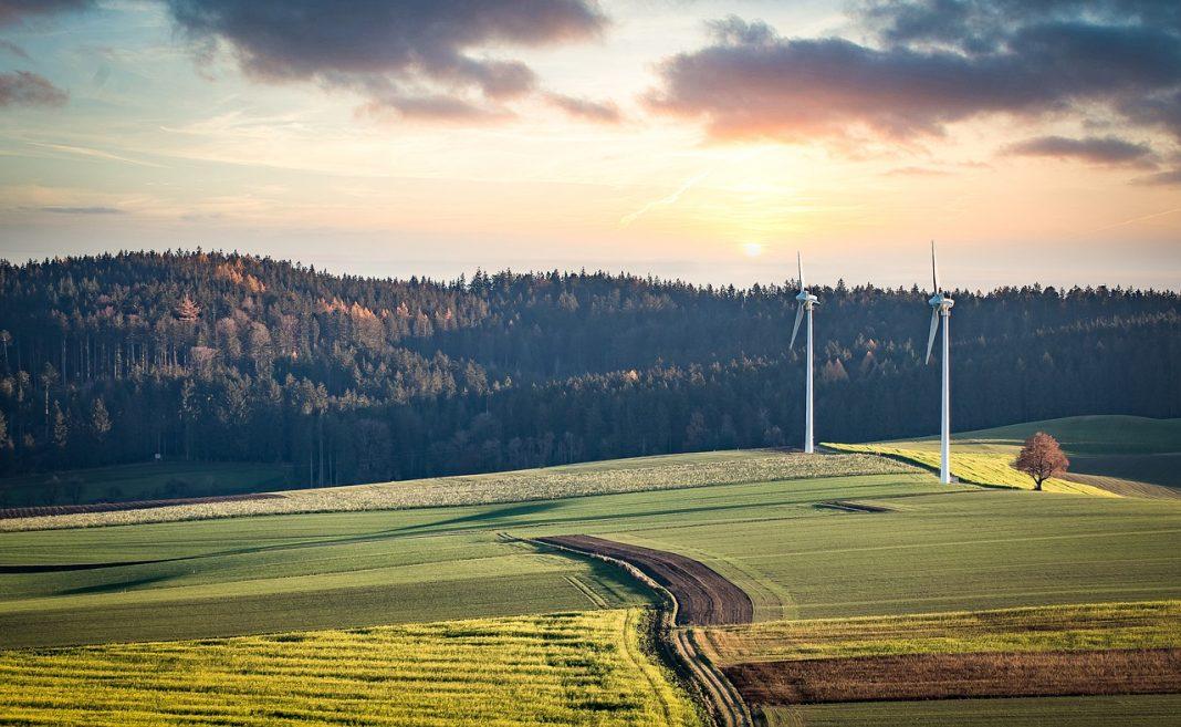 Windmills Fields Land Trees Forest  - Franz26 / Pixabay